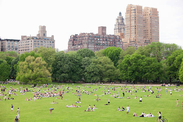Public Places Wall Art - Photograph - People Lounging On The Central Parks by Andrew Rowat