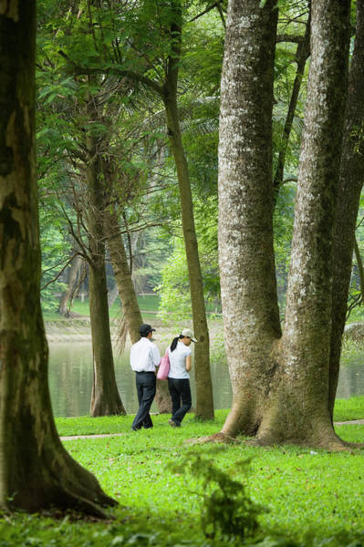 Botanical Photograph - People Walking In Botanic Gardens by Lonely Planet