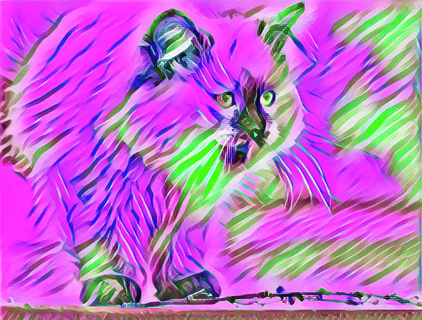 Digital Art - Perched Kitten Pink by Don Northup