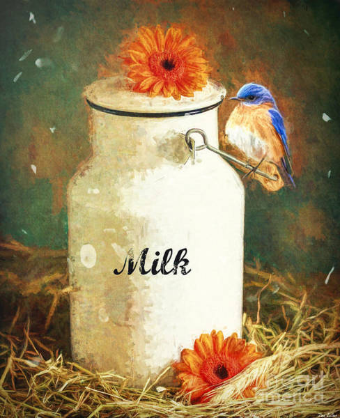Jug Digital Art - Perched On The Milk Can by Tina LeCour