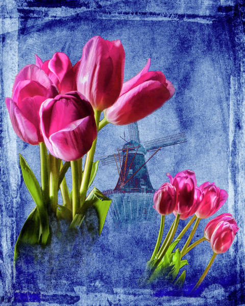 Photograph - Perennial Red Tulip Flowers With Dutch Windmill On Blue by Randall Nyhof