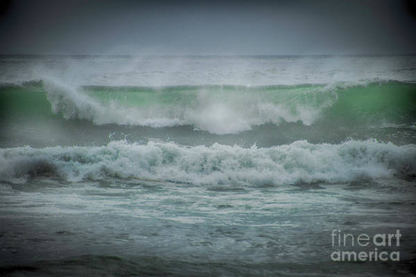 Photograph - Perfect Curl by Judy Hall-Folde