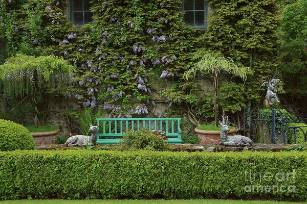 Photograph - Perfect Garden by Peter Skelton