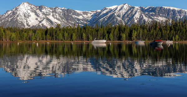 Photograph - Perfect Jackson Lake Reflection by Dan Sproul