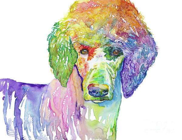 Pedigree Painting - Perfect Poodle by Raelene Vining