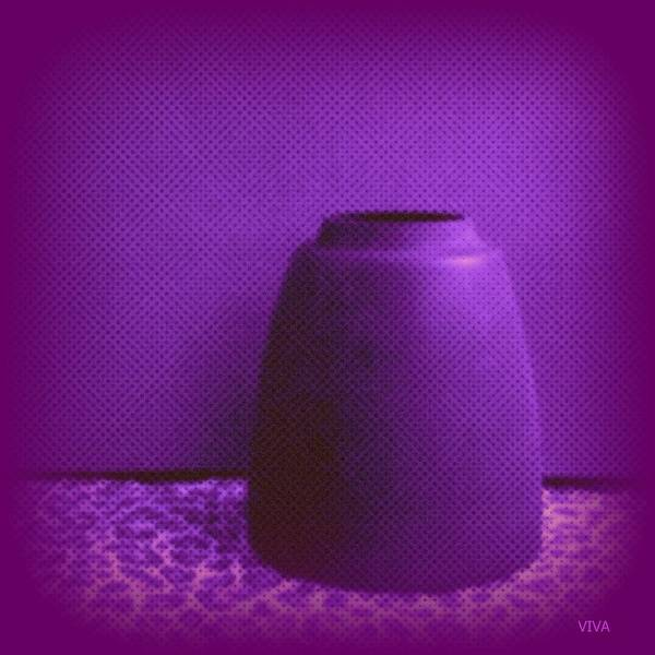 Photograph - Perfect Purple Pot by VIVA Anderson
