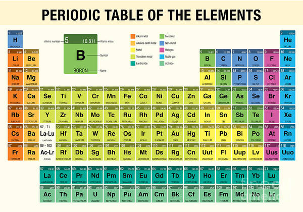 Wall Art - Digital Art - Periodic Table Of The Elements - by Alejo Miranda