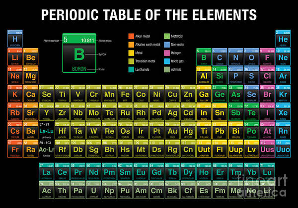 Wall Art - Digital Art - Periodic Table Of The Elements In Black by Alejo Miranda