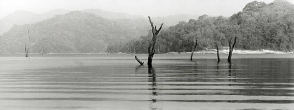 Wall Art - Photograph - Periyar Lake by Kontrast-fotodesign