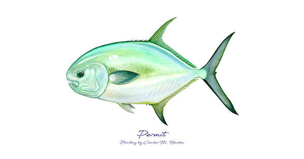 Painting - Permit by Charles Harden