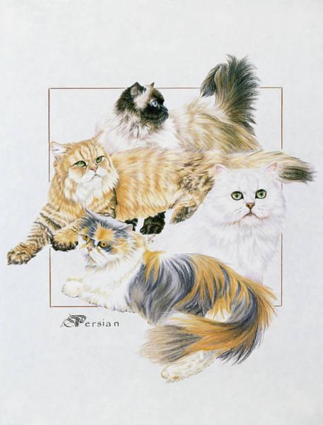 Drawing - Persian by Barbara Keith