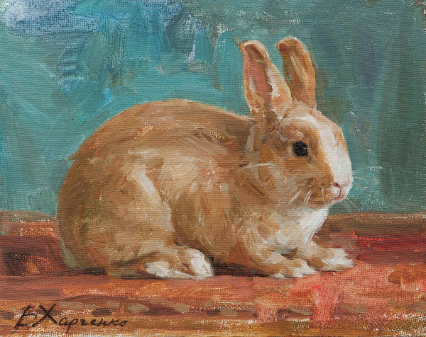 Wall Art - Painting - Persik On The Mat by Victoria Kharchenko