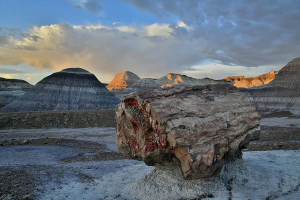 Photograph - Petrified Log In Blue Mesa Of Petrified Forest Np by Ray Mathis
