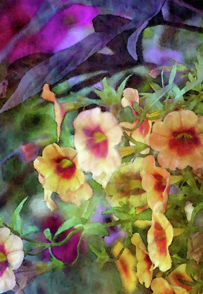 Photograph - Petunias In Contrast 6581 Idp_2 by Steven Ward