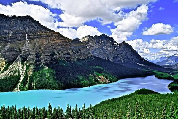 Wall Art - Photograph - Peyto In Banff National Park by Frozen in Time Fine Art Photography