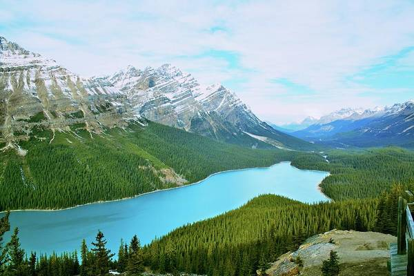 Peyto Lake Wall Art - Photograph - Peyto Lake by Bryan Garnett-law