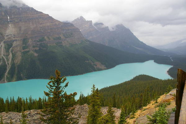 Peyto Lake Wall Art - Photograph - Peyto Lake by By Johan Krijgsman, The Netherlands