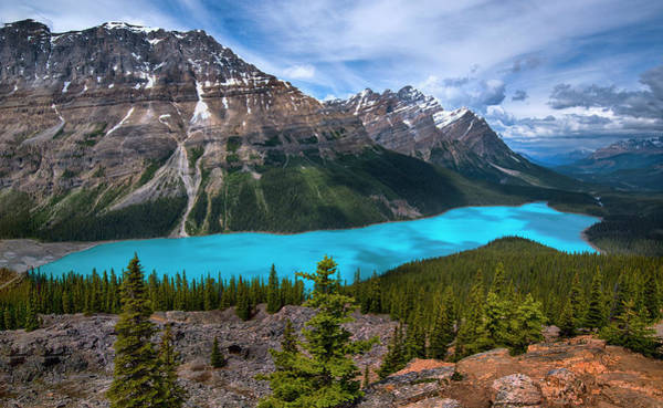 Peyto Lake Wall Art - Photograph - Peyto Lake In Banff National Park Canada by Dave Dilli