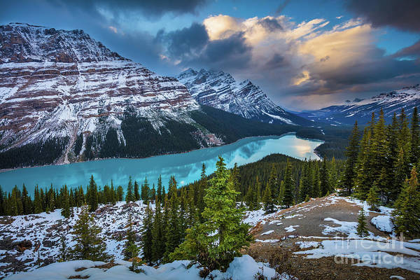 Peyto Lake Wall Art - Photograph - Peyto Lake by Inge Johnsson