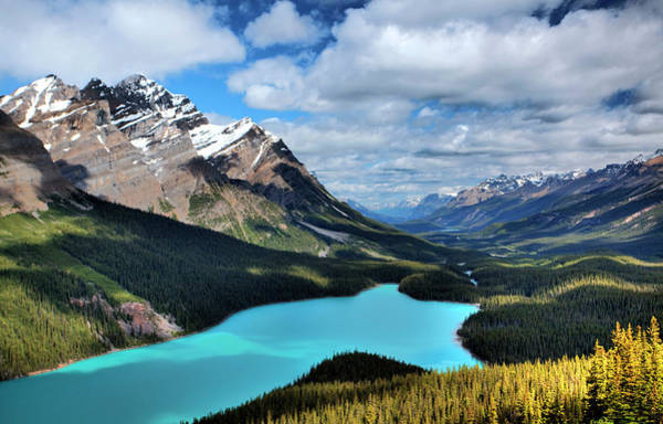 Peyto Lake Wall Art - Photograph - Peyto Lake by Jordanwhipps1987
