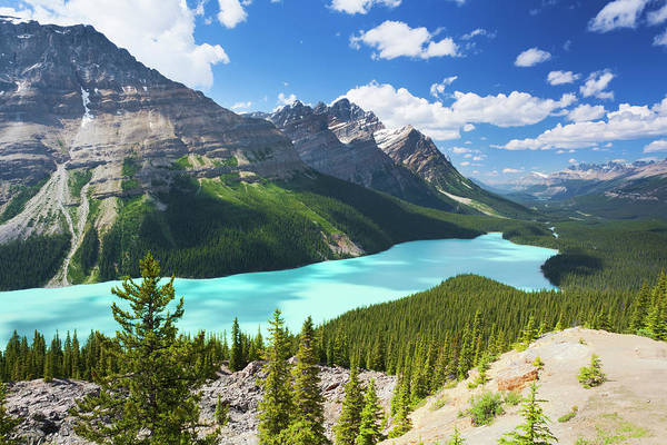 Peyto Lake Wall Art - Photograph - Peyto Lake Landscape by Glowingearth
