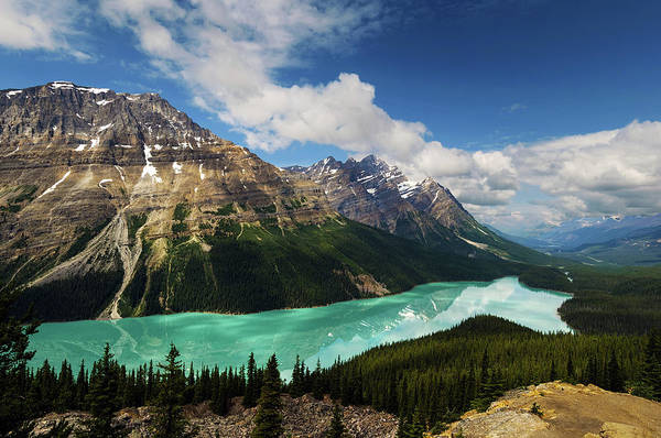 Peyto Lake Wall Art - Photograph - Peyto Lake by Noppawat Tom Charoensinphon