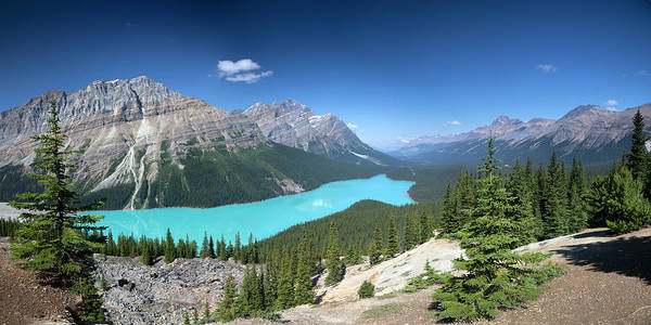 Peyto Lake Wall Art - Photograph - Peyto Lake Panorama, Banff National Park by Dan prat
