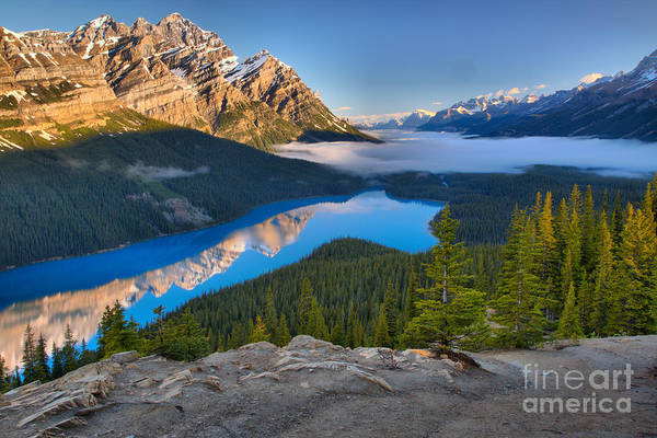 Photograph - Peyto Lake Spring Morning Reflections by Adam Jewell