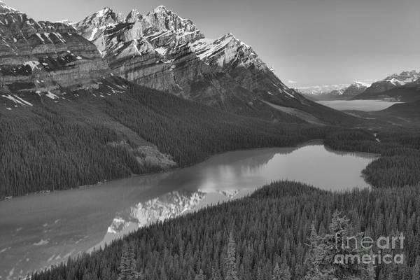 Photograph - Peyto Lake Sunrise Reflections Black And White by Adam Jewell