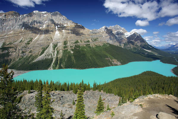 Peyto Lake Wall Art - Photograph - Peyto Lake by Urs Blickenstorfer