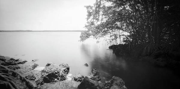 Photograph - Ph Biscayne Np 071902 by Rudy Umans