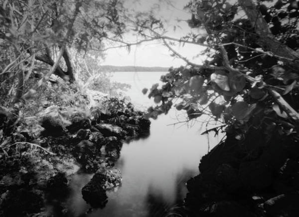 Photograph - Ph Biscayne Np 071903 by Rudy Umans