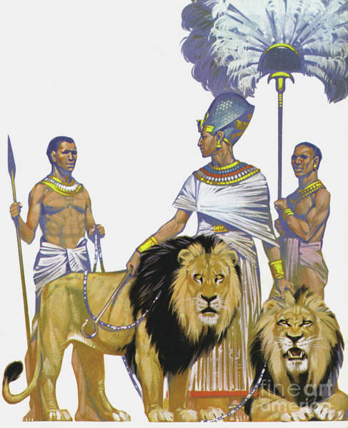 Wall Art - Painting - Pharaoh Rameses II Of Egypt And His Lions by Angus McBride