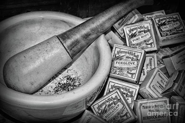 Wall Art - Photograph - Pharmacy-herbal Medicine Black And White by Paul Ward