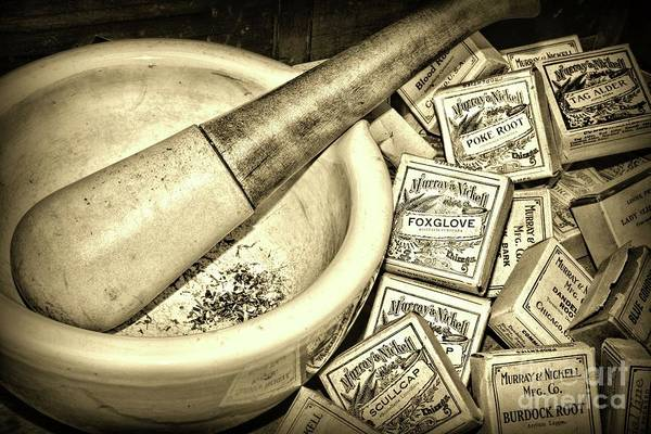 Wall Art - Photograph - Pharmacy-herbal Medicine Sepia by Paul Ward