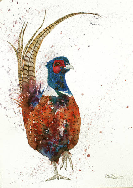 Painting - Pheasant Portrait by John Silver