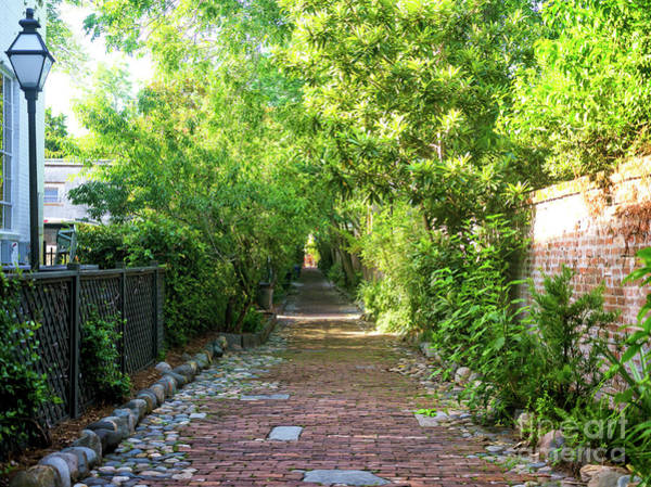 Photograph - Philadelphia Alley Colors In Charleston by John Rizzuto