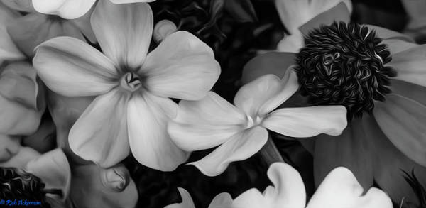 Photograph - Phlox And Blackeyed Susan In Black And White by Rich Ackerman