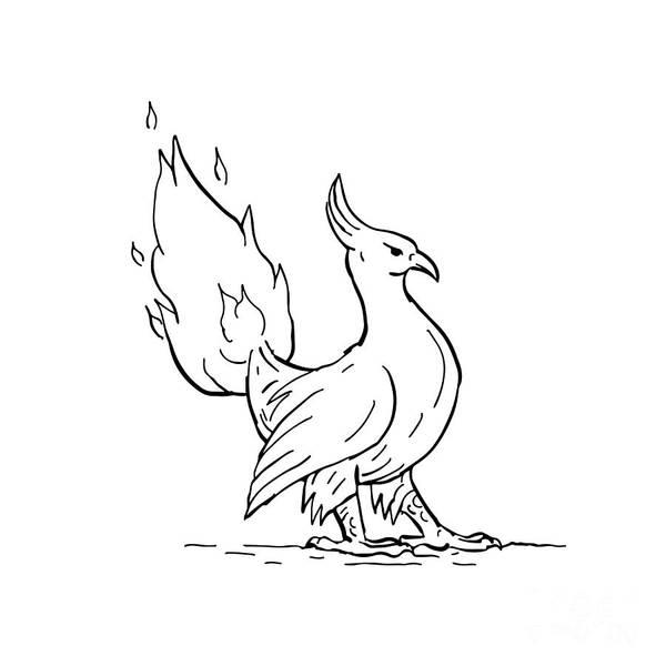 Wall Art - Digital Art - Phoenix Burning Tail Drawing by Aloysius Patrimonio