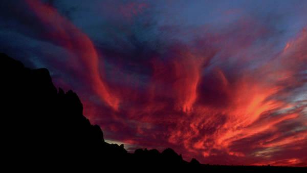 Photograph - Phoenix Risen2 by Randy Oberg
