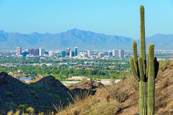 Horizontal Photograph - Phoenix Skyline Framed By Saguaro by Dszc