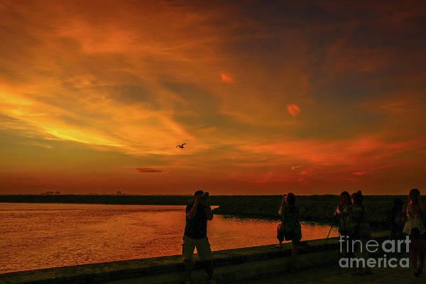 Photograph - Photographers Sunrise by Tom Claud