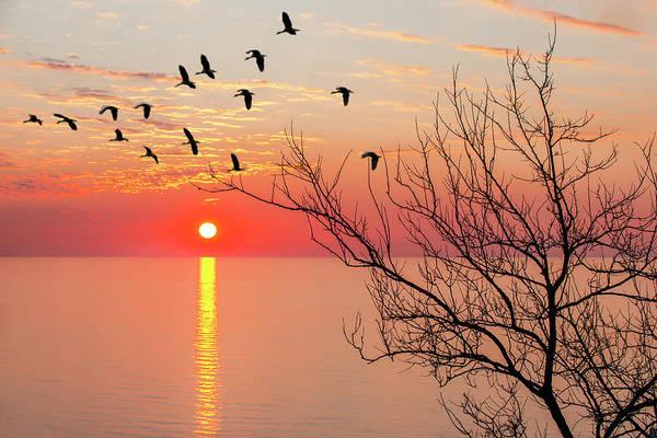 Photograph - Sunset by Gouzel -