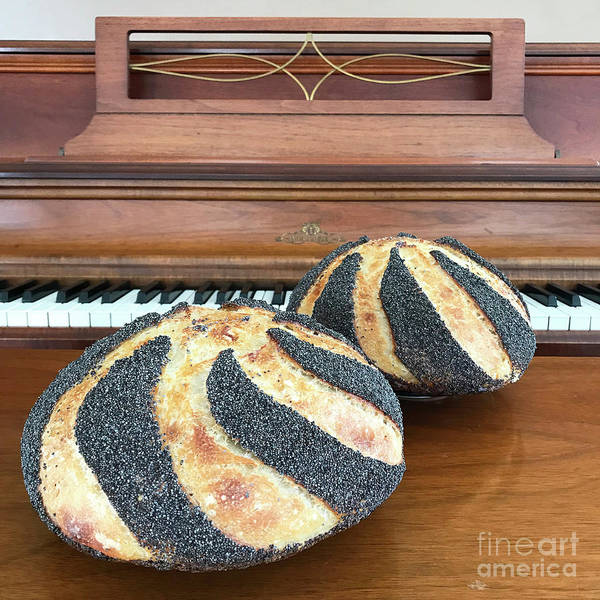 Photograph - Piano And Poppy Seed Swirl Sourdough 1 by Amy E Fraser