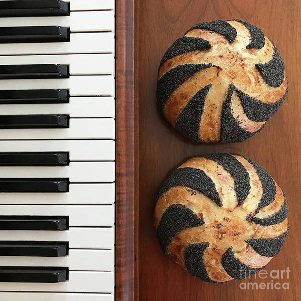 Photograph - Piano And Poppy Seed Swirl Sourdough 3 by Amy E Fraser