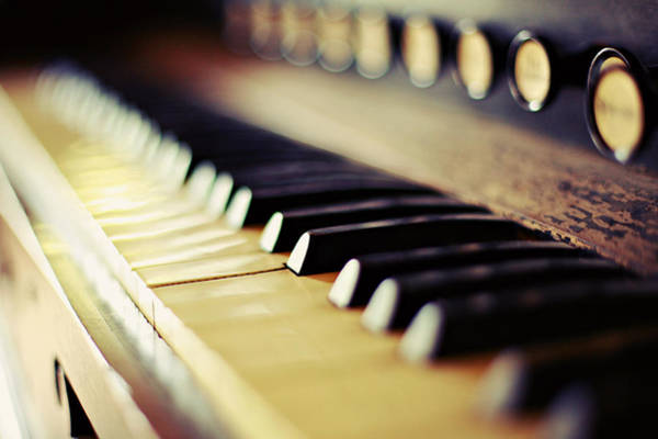 Piano Photograph - Piano by Copyright Sarah Kriner