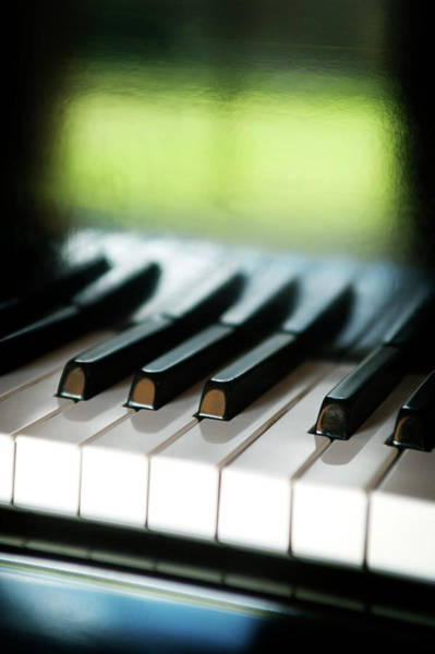 Musical Artists Photograph - Piano Keys by Bluberries