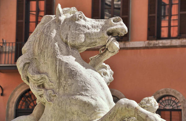 Photograph - Piazza Fountain Steed  by JAMART Photography