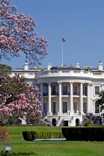 Democracy Photograph - Picture Of The White House During by Dhuss