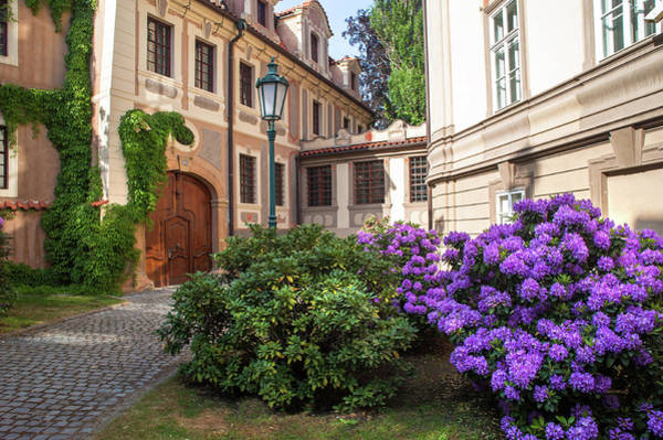 Photograph - Picturesque Kolowrat Garden With Blooming Rhododendrons by Jenny Rainbow